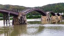ダムの放流で、錦帯橋は久しぶりに全橋揃って川の中