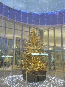 岩国錦帯橋空港のクリスマスツリー