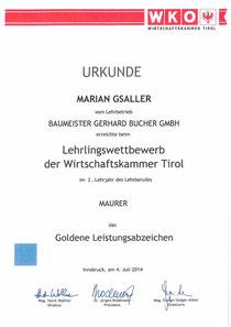 Goldenes Leistungsabzeichen - Marian Gsaller - 2. Lehrjahr