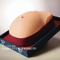 乳癌触診モデルKY11325-000