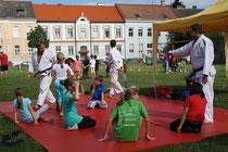 Vorführung Judo Club Stockerau