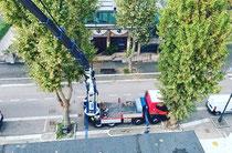 Rimini gru noleggio camion gru e piattaforma aerea 37 metri per intervento sito telefonia a Cesenatico