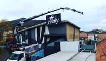 Rimini gru noleggio camion con gru 32 metri per montaggio vetri presso nuova struttura produttiva a SaRimini gru noleggio camion gru 37 metri con vericello per posizionamento macchinario aria condizionata a Novafeltria