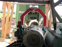 Ecorcage et détection des métaux