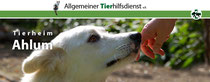 Tierheim Ahlum