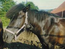 Ronja 1997