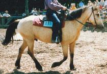 Mistral 1998