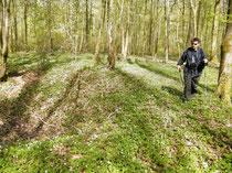 Verdun Verdunbilder Rene Reuter Jens Walko Reisebericht