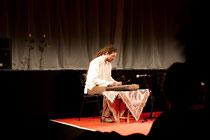 Benjamin Stein, Multiinstrumentalist
