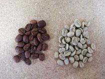 Gerösteter und roher Bio Nicaragua Kaffee