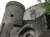 Die Burg Guttenberg ist eine der wenigen Burganlagen aus dem 12. Jahrhundert, die nie zerstört wurde. Foto: Verena Wolff