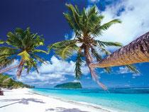 Paradiesisch: Palmen, Strände, Tropenfrüchte, Tradition und viel Gesang - die Samoaner sorgen dafür, dass sich auch Gäste wie zu Hause fühlen. Foto: STA/kirklandphotos.com