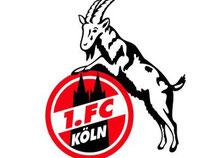Das Logo des Fußball-Erstligisten 1. FC Köln. Foto: