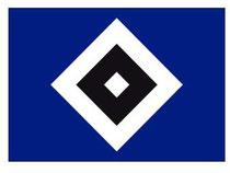 Das Logo des Fußball-Erstligisten Hamburger SV. Foto: