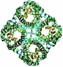 modèle d'un pore d'aquaporine constitué de 4 protéines en forme de canal