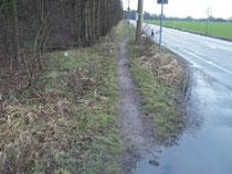 Fahrradweg von Blumenau