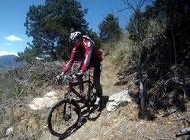 Im Trail