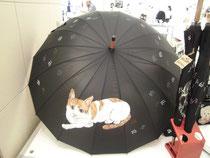 にゃんこ傘