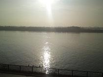 朝7時過ぎの旧江戸川
