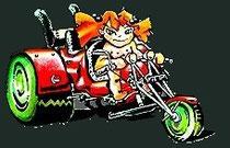 Trike Centrum Vinkeveen