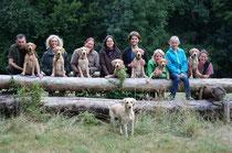von links nach rechts: Jeannie, Paula, Hugo, Pepper, Finn, Annie, Kiwi und ganz vorne Mama Beele