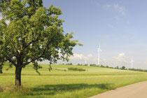 Windräder auf m Feld