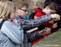 Schüler entdecken Natur!