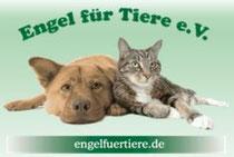 Engel für Tiere e.V.