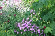 Ein Blumengruß auf dem Terrassentisch