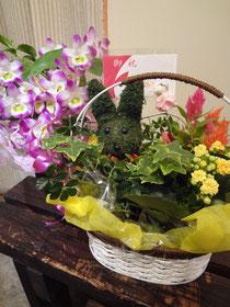 きれいなお花、ありがとうございます!