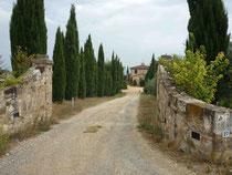 (En Toscane, sur la Via Francigena)