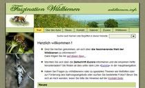 wildbienen.info/