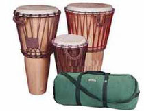 Drum Rental and Case