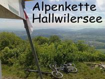 Gisliflue Alpenkette Hallwilersee