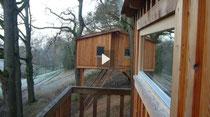 Urlaub im Baumhaus-Hotel - Der Check