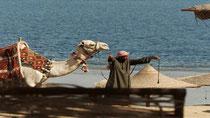 Ägypten kämpft um Urlauber