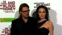Brad Pitt und Angelina Jolies Wein prämiert