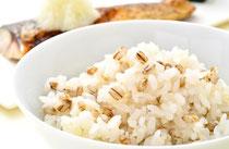 もち麦 品種「ダイシモチ」