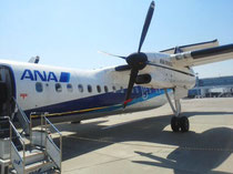 ANAは3月末で運行中止になる!