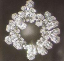 Lourdes Wasserkristall (Frankreich)