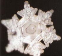 Wasserkristall antarktische Eis