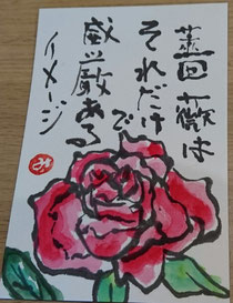 34 薔薇