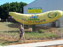Big Banana in Carnarvon