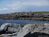 Küste von Doolin