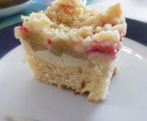 Rhabarber-Erdbeer Kuchen mit Topfenfüllung