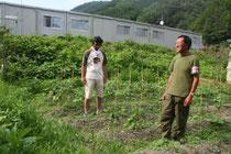 畑では既にナスやスイカなどが栽培されている=岩手県大槌町