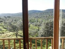 Desde cualquier espacio de la casa conexión con el clima, el paisaje y la naturaleza.