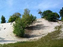 La butte de sable d'Aumont en Halatte