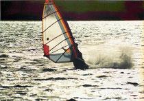 休日:風が吹いたらウインドサーフィン、吹かなかったら診療所長室で論文書いてた(クリックしてやってください^^)