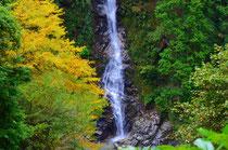 達原渓谷の不動滝の紅葉